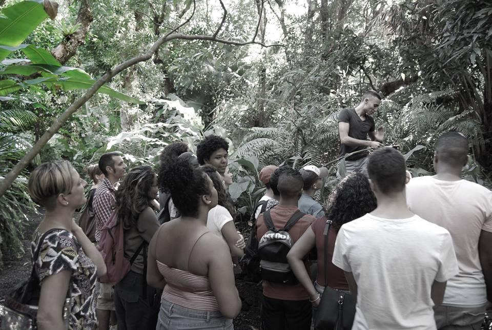 Visite guidée du jardin des parfums et des épices à l'île de La Réunion